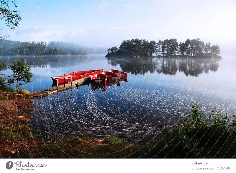 Skogrtun 2 Natur Wasser Ferien & Urlaub & Reisen rot Einsamkeit Erholung Umwelt Landschaft See Stimmung Schwimmen & Baden Nebel Freizeit & Hobby elegant Insel