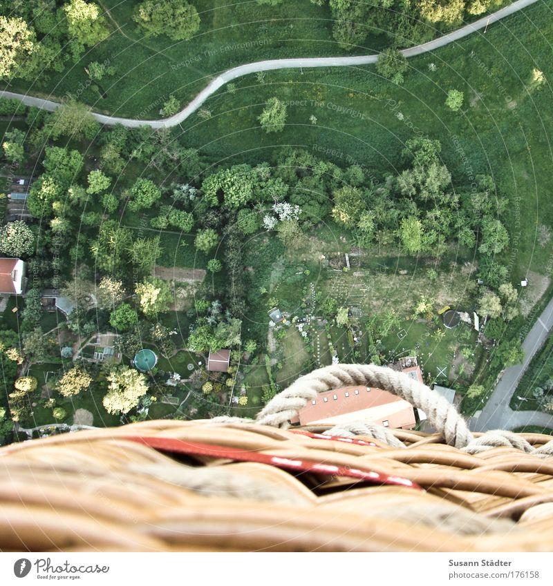 Naturarchitektur Baum Pflanze Sommer Ferien & Urlaub & Reisen Tier Ferne Straße Erholung Wiese oben Garten Freiheit Park Landschaft Feld