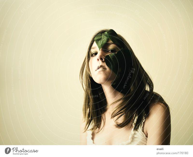 Grün Frau Mensch Jugendliche schön grün Gesicht Blatt gelb feminin Haare & Frisuren Kopf Erwachsene Kosmetik brünett langhaarig Junge Frau