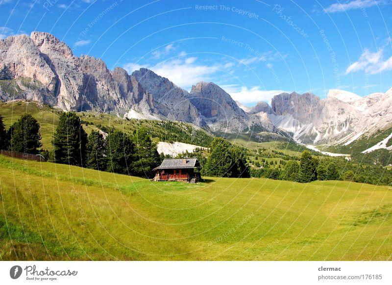 cisles alm Sonne Sommer Ferien & Urlaub & Reisen Gras Berge u. Gebirge Freiheit wandern Tourismus Sommerurlaub