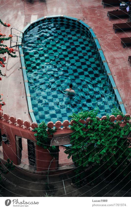 Pool Reichtum elegant Wellness Ferien & Urlaub & Reisen Tourismus Ausflug Ferne Freiheit Häusliches Leben Traumhaus Schwimmen & Baden Schwimmbad Mensch Mann