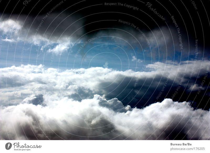 Zwischen Hölle und Himmel Farbfoto Luftaufnahme Tag Lebensfreude blau Wolken Luftverkehr