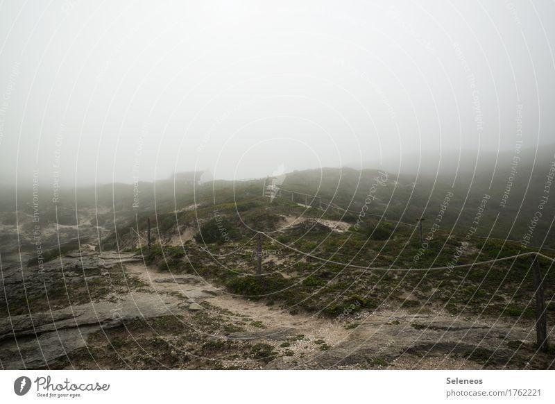 Seltsam im Nebel zu wandern Natur Ferien & Urlaub & Reisen Landschaft Meer Ferne Umwelt Wege & Pfade Bewegung Küste Ausflug Idylle Beginn Klima nass