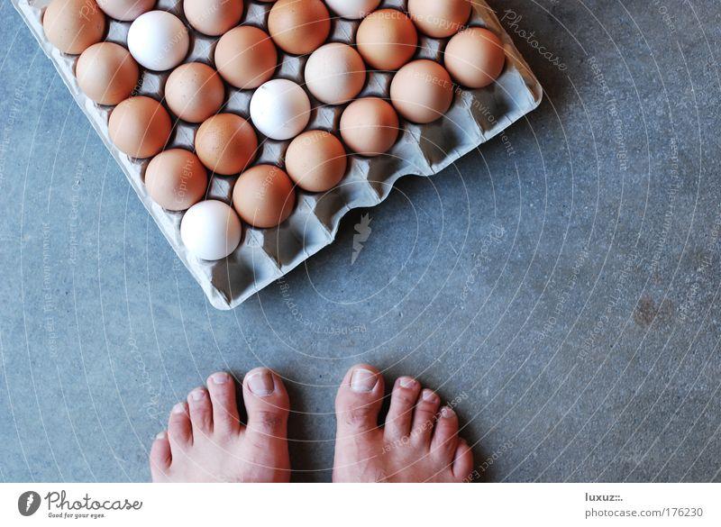 Henne-Ei-Problem Fuß Aktion viele tierisch Barriere Barfuß Fragen Anschnitt Bildausschnitt Zehen zerbrechlich Problematik Zweck Moral Projekt