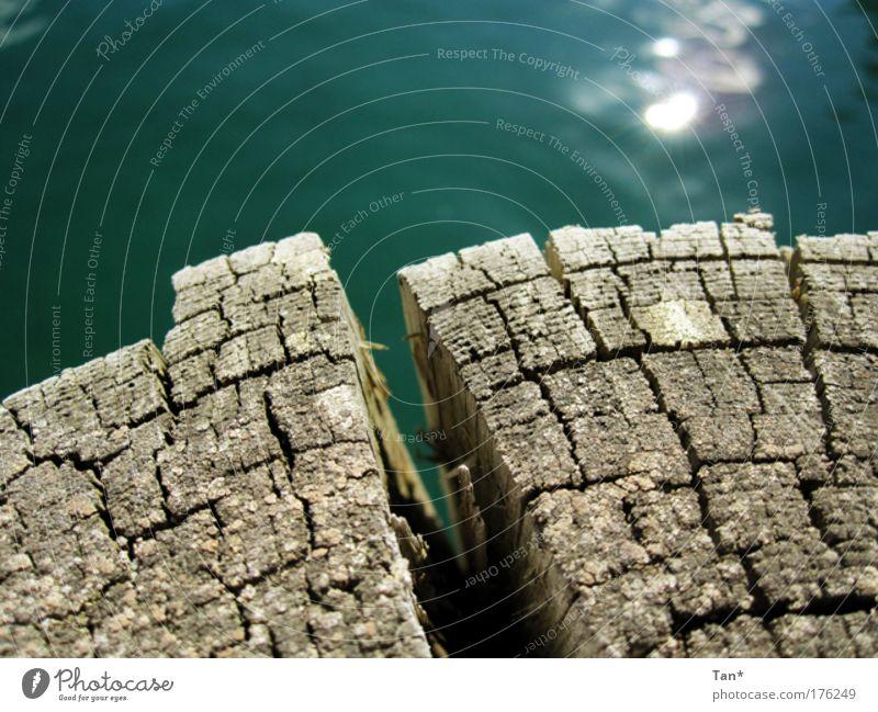 Barriere Natur Wasser alt grün blau Holz braun Küste glänzend kaputt Wandel & Veränderung Klima Schutz Hafen rein Spiegel