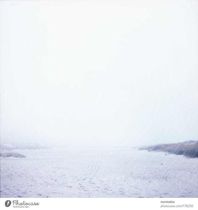 Strandlosigkeit Natur Meer Winter Strand Ferien & Urlaub & Reisen grau Traurigkeit Sand Landschaft Stimmung Küste Kunst Nebel laufen Wassertropfen
