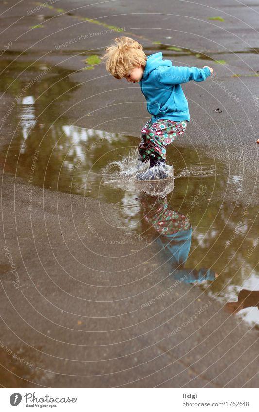 kleiner Junge mit bunter Hose und blauer Jacke hat Spaß und springt schwungvoll in eine Pfütze Mensch feminin Kleinkind Kindheit 1 1-3 Jahre Umwelt Wasser
