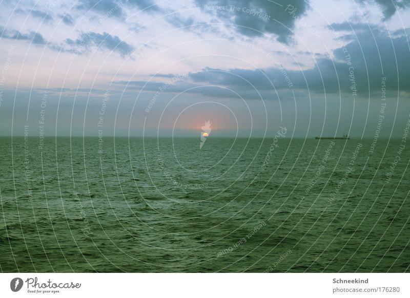 Begleiter am Horizont Himmel Natur blau schön Sonne Meer ruhig Ferne Umwelt Freiheit frei ästhetisch Schifffahrt Fernweh malerisch