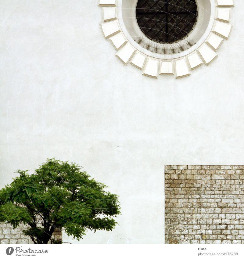Basis und Überbau (religious style) Baum grün Fenster Stein Mauer klein hoch Dekoration & Verzierung Backstein historisch Schönes Wetter Ornament Gotteshäuser Philosophie getüncht
