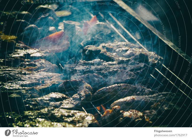 Mittag Sommer Essen Lebensmittel Ernährung kochen & garen Rauch Medien Grillen Fleisch Abendessen Picknick Mittagessen Grill Festessen Wurstwaren füttern