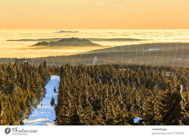 Blick vom Fichtelberg ins Nebenlmeer Richtung Tschechien Ferien & Urlaub & Reisen Baum Landschaft Ferne Winter Wald Berge u. Gebirge Schnee Freiheit