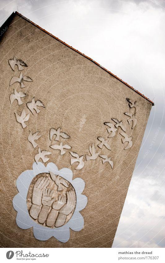 FRIEDENSTAUBEN alt Himmel Haus Wolken dunkel Wand grau Mauer Gebäude Kunst fliegen frei Fassade trist Dach