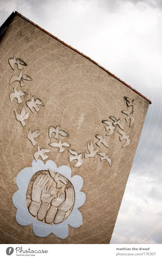 FRIEDENSTAUBEN Farbfoto Außenaufnahme Menschenleer Tag Licht Schatten Kontrast Sonnenlicht Froschperspektive Kunst Kultur Himmel Wolken Kleinstadt Haus Gebäude