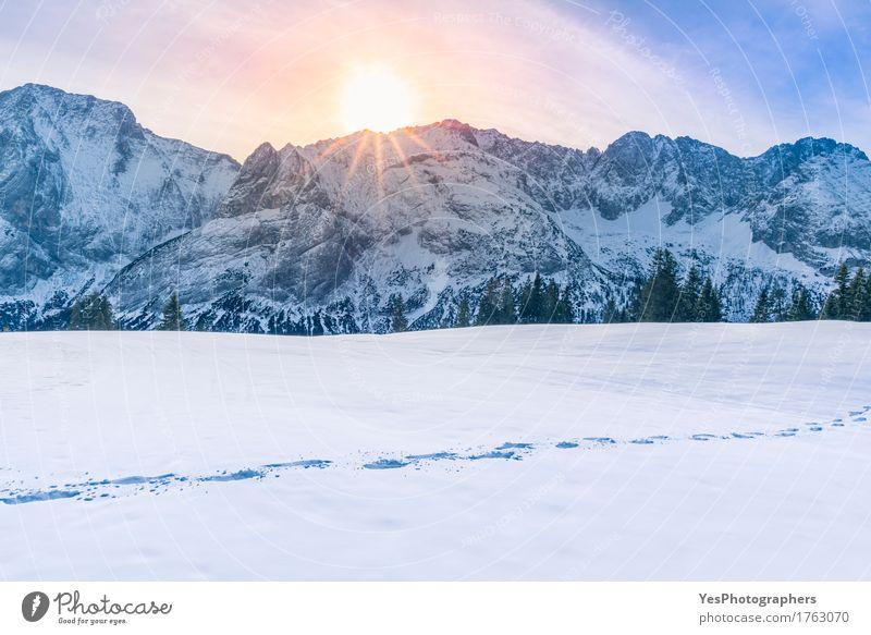 Sun scheint über Berggipfel und Schnee Freude ruhig Freiheit Sonne Berge u. Gebirge Silvester u. Neujahr Wetter Baum Alpen Gipfel Schneebedeckte Gipfel Fährte