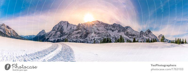 Sonniger Wintertag in den Bergen Ferien & Urlaub & Reisen weiß Baum Freude Wald Berge u. Gebirge kalt Straße Schnee Glück Felsen hell Wetter Europa Gipfel Frost