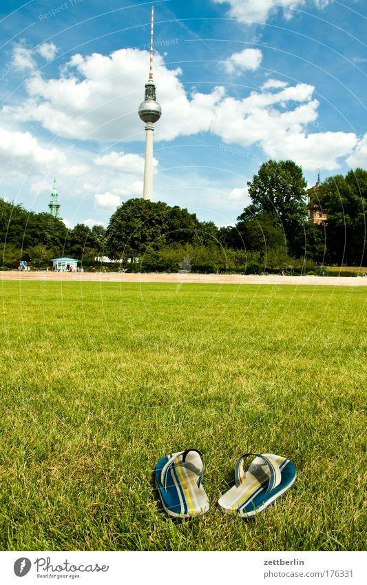 Schlossplatz Himmel Sommer Ferien & Urlaub & Reisen Wolken Berlin Wiese Gras Schuhe Rasen Burg oder Schloss Skyline Natur Stadt Berliner Fernsehturm Hauptstadt