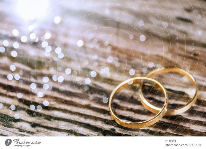 Traumringe Lifestyle elegant Feste & Feiern Valentinstag Hochzeit braun weiß Ring Ehe Ehering Paar Versprechen Holzbrett Maserung Kostbarkeit Lebensformen