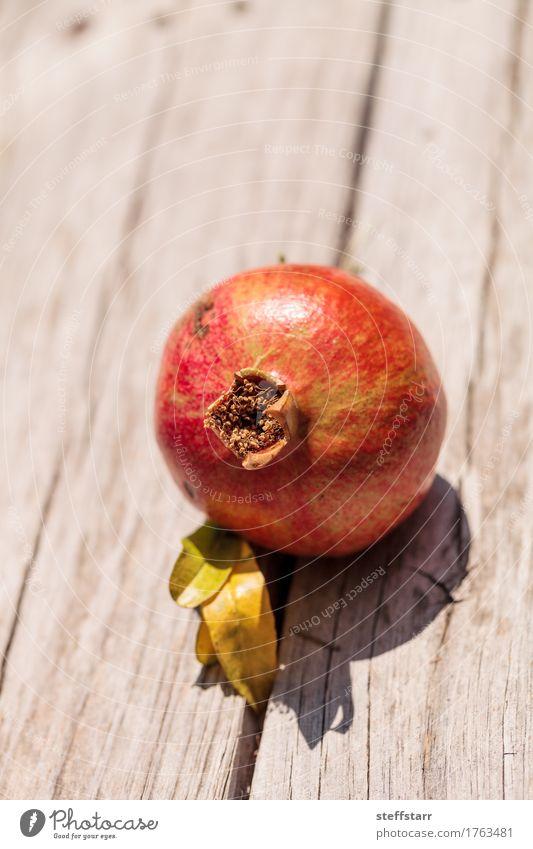 Roter Granatapfelfrucht Punica granatum Lebensmittel Frucht Dessert Ernährung Essen Frühstück Bioprodukte Vegetarische Ernährung Diät Pflanze Baum Blatt braun