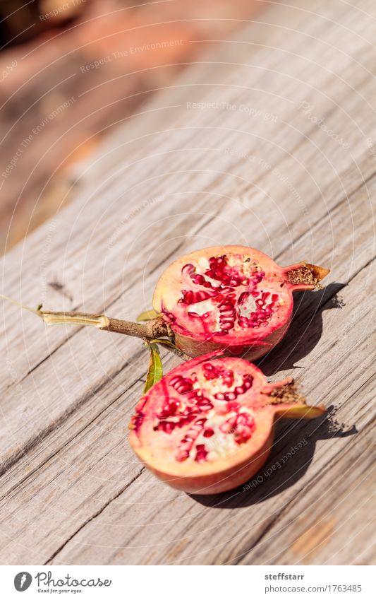 Frischer roter Granatapfelfrucht Punica granatum Natur Pflanze grün schön Baum Blatt Leben Essen Lifestyle Gesundheit Garten Lebensmittel braun rosa Frucht
