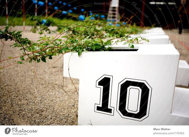 Los geht's! Kunst Kunstwerk Skulptur Umwelt Natur Pflanze Tier Sommer Grünpflanze Park Wachstum grün weiß Kraft Fortschritt Geschwindigkeit Efeu
