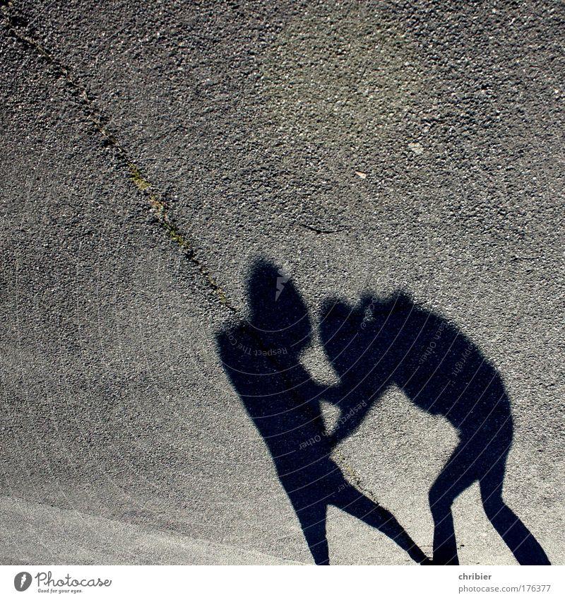 Geschwister... Gedeckte Farben Textfreiraum oben Abend Licht Schatten Kontrast Silhouette Gegenlicht Kampfsport Mensch Jugendliche Leben 2 Straße kämpfen toben