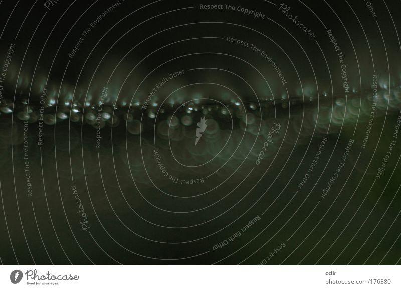 Leuchtspur Farbfoto Gedeckte Farben Außenaufnahme Nahaufnahme Detailaufnahme Makroaufnahme Strukturen & Formen Menschenleer Textfreiraum unten Dämmerung