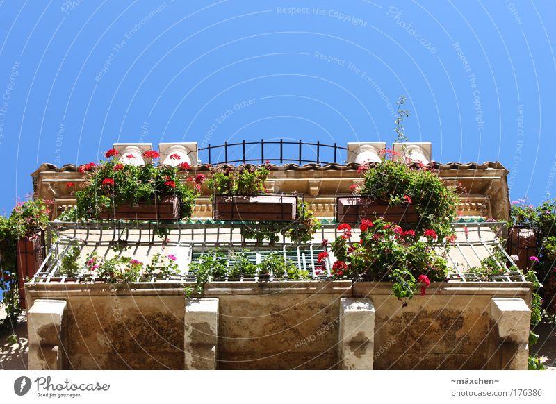 Balkonien schön alt Himmel Sonne Stadt grün blau Pflanze Sommer Haus Wand Mauer Gebäude Sizilien Architektur