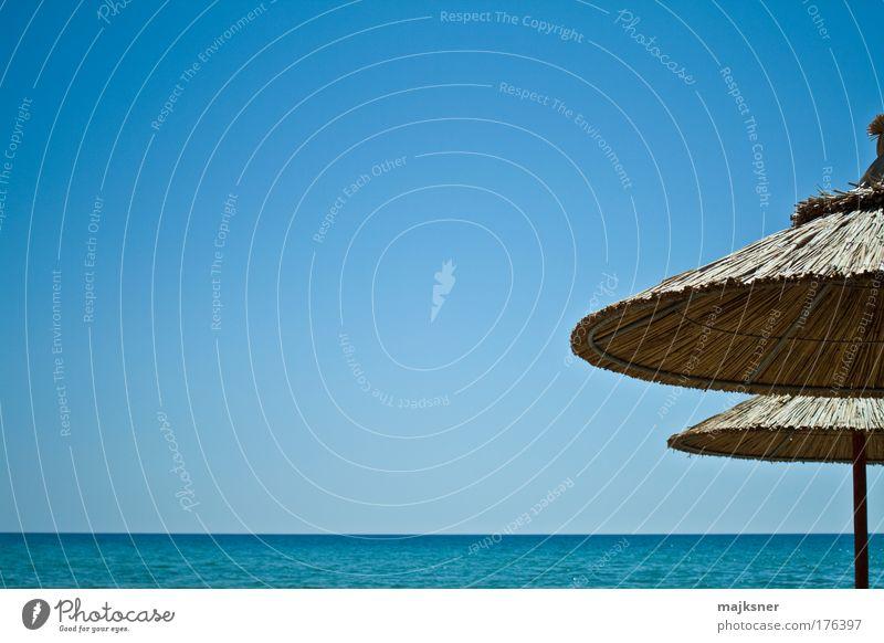 Natur Wasser schön Himmel weiß grün blau Sommer Strand Ferien & Urlaub & Reisen Erholung Landschaft braun Küste Umwelt Horizont
