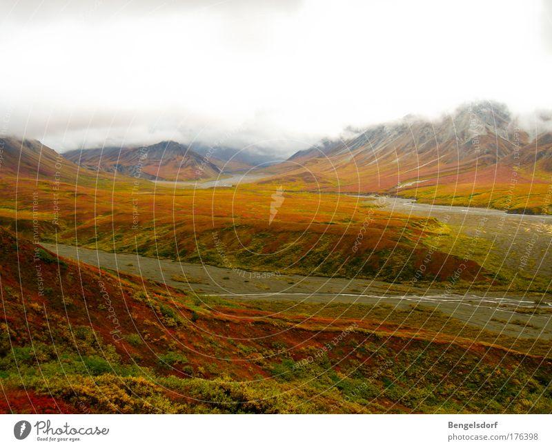kurz vor Feuerland Ferien & Urlaub & Reisen Tourismus Ausflug Ferne Freiheit Expedition Berge u. Gebirge Natur Landschaft Wolken Nebel Gras Moos Flechten Hügel