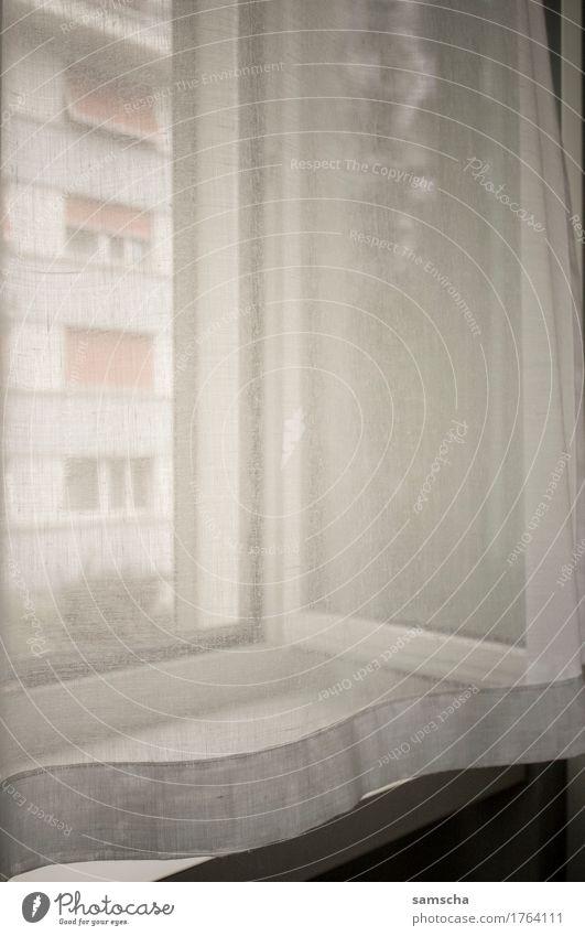 Aus dem Fenster Häusliches Leben Wohnung weich Vorhang weiß Licht Lichtschein Lichteinfall Aussicht Schlafzimmer Wohnzimmer wohnlich gemütlich weiches licht