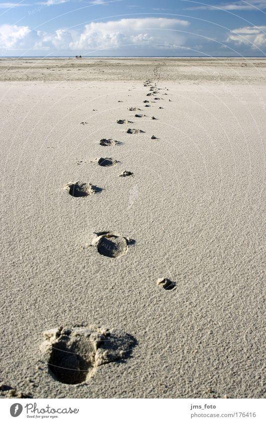 Spuren im Sand Meer Strand Ferien & Urlaub & Reisen Wolken Ferne Landschaft Spaziergang Ziel gehen Nordsee Sommerurlaub