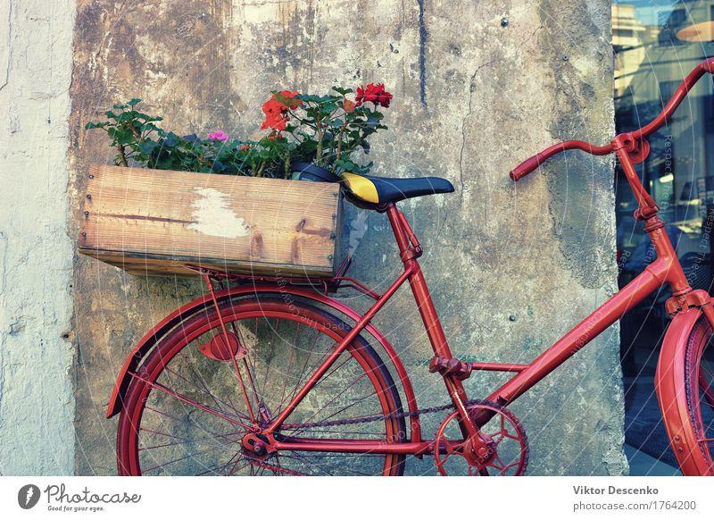 Blumen in einer Holzkiste Design Ferien & Urlaub & Reisen Haus Ostsee Kleinstadt Stadt Gebäude Architektur Verkehr Straße Rost alt nah retro rot Fahrrad Wand