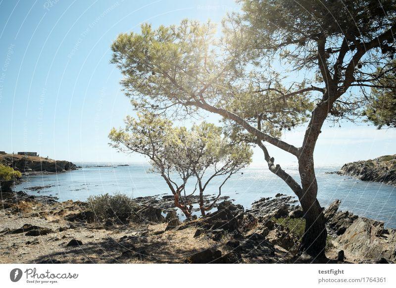 landschaft mit wasser III Ferien & Urlaub & Reisen Ausflug Ferne Freiheit Sommer Sonne Meer Insel Umwelt Natur Landschaft Himmel Baum Küste Strand Bucht träumen