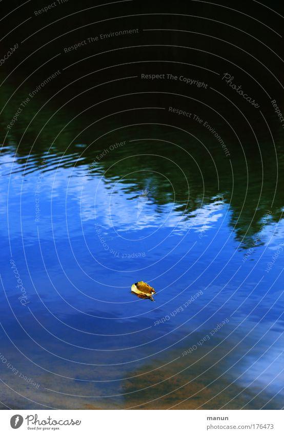 Es geht los! Natur Wasser Himmel Sommer ruhig Blatt Wald Erholung Herbst Tod Traurigkeit See Landschaft Zufriedenheit Wandel & Veränderung Vergänglichkeit