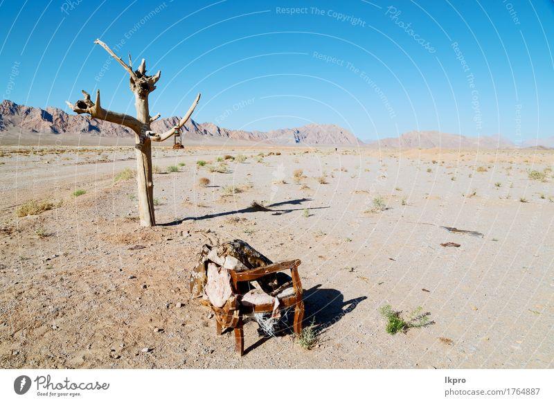 in der leeren Wüste von Persien Lampenöl auf Ast Himmel Natur Ferien & Urlaub & Reisen Pflanze schön Baum Landschaft Einsamkeit Wolken Berge u. Gebirge Umwelt