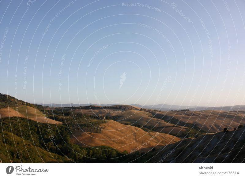 Abendsonne Farbfoto Außenaufnahme Menschenleer Textfreiraum oben Dämmerung Schatten Kontrast Sonnenlicht Sonnenaufgang Sonnenuntergang Panorama (Aussicht)