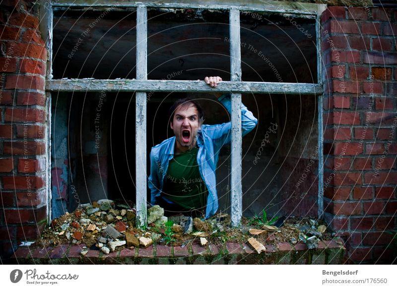 Revier Mensch alt Gesicht Haus Fenster Gebäude Kraft Wohnung gefährlich Innenarchitektur bedrohlich Häusliches Leben Mut Umzug (Wohnungswechsel) Stress Ruine