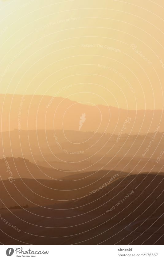 Toskanisches Abendrot Natur Himmel Pflanze Sommer Ferien & Urlaub & Reisen ruhig gelb Ferne Berge u. Gebirge Freiheit Landschaft Stimmung Erde Umwelt gold groß