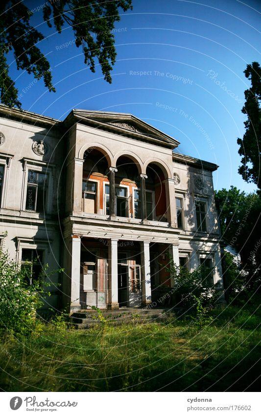 Alter Glanz Natur schön Einsamkeit Umwelt Leben Architektur Garten Traurigkeit träumen Zeit Fassade elegant ästhetisch Häusliches Leben Wandel & Veränderung Vergänglichkeit