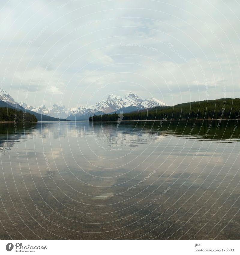 Maligne Lake Farbfoto Außenaufnahme Menschenleer Textfreiraum oben Textfreiraum unten Tag Ferien & Urlaub & Reisen Tourismus Sommer Berge u. Gebirge Natur