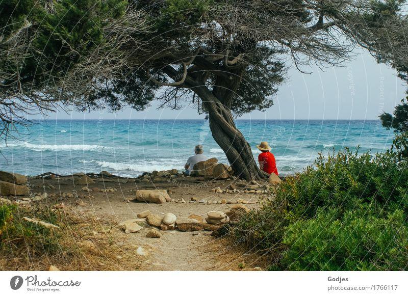 altverliebt Mensch maskulin feminin Weiblicher Senior Frau Männlicher Senior Mann Paar Erwachsene 2 45-60 Jahre 60 und älter Natur Sand Himmel Sommer Wetter
