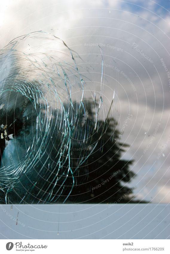 Getroffen Umwelt Natur Landschaft Himmel Schönes Wetter Baum Mauer Wand Fenster Fensterscheibe kaputt Glasbruch Zerbrochenes Fenster gebrochen Riss konzentrisch