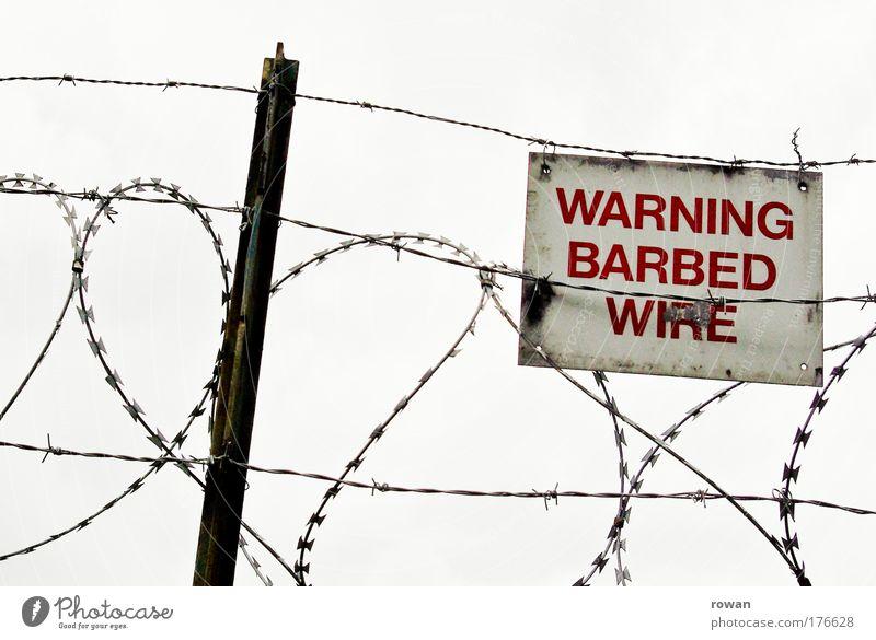 barbed wire love Farbfoto Gedeckte Farben Außenaufnahme Tag Stacheldraht berühren bedrohlich dunkel stachelig rot Schutz gefährlich Misstrauen Feindseligkeit