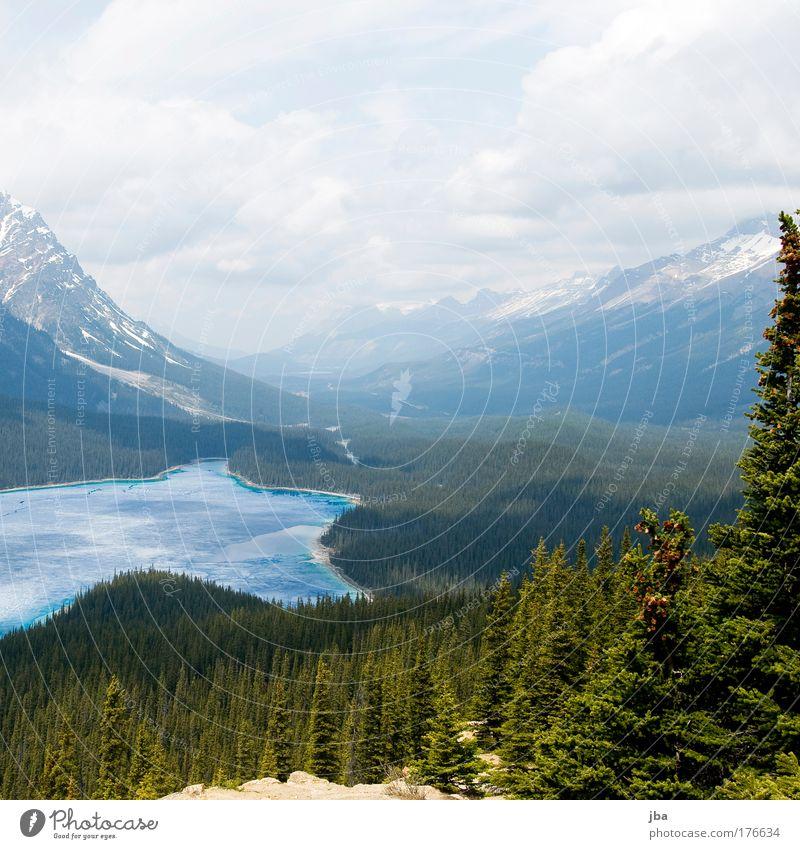 Peyto Lake Natur Himmel blau Sommer Ferien & Urlaub & Reisen Wolken Erholung Berge u. Gebirge See Landschaft Ausflug frisch Tourismus natürlich entdecken