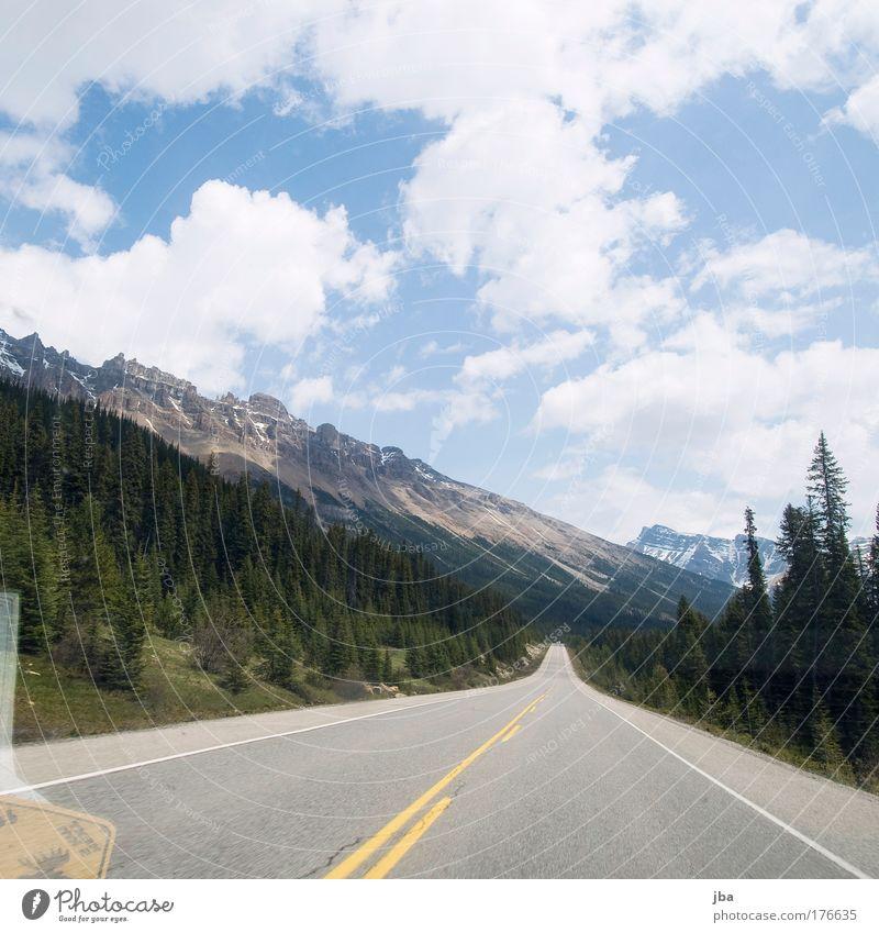 Icefield Parkway Himmel grün blau Sommer Freude Ferien & Urlaub & Reisen Wolken Ferne Straße Wald Erholung Berge u. Gebirge Bewegung Freiheit Landschaft