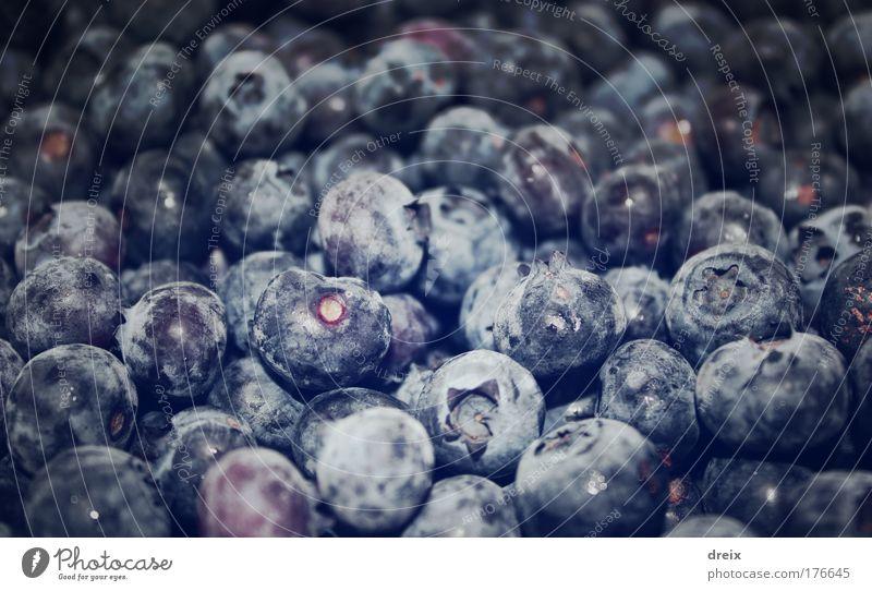 Vaccinium Myrtillus Farbfoto Nahaufnahme Experiment Menschenleer Kunstlicht Starke Tiefenschärfe Weitwinkel Frucht Blaubeeren Beeren saftig blau Überfluss viele