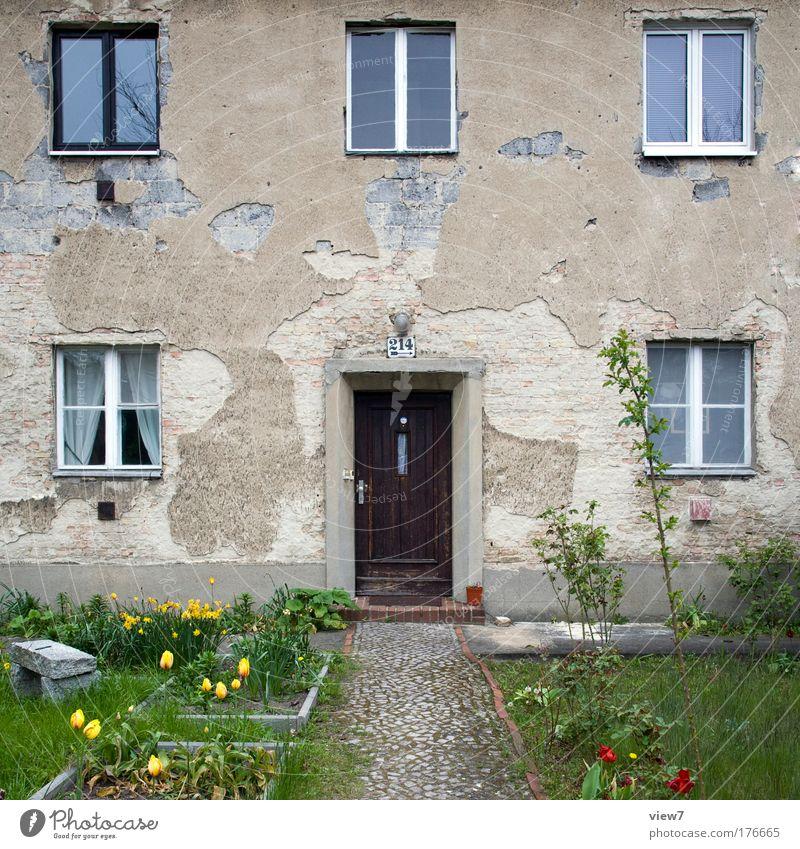 Vorgarten Natur alt grün schön Pflanze Blume Haus Fenster Wand Gras Glück Mauer Tür Zufriedenheit Fassade ästhetisch