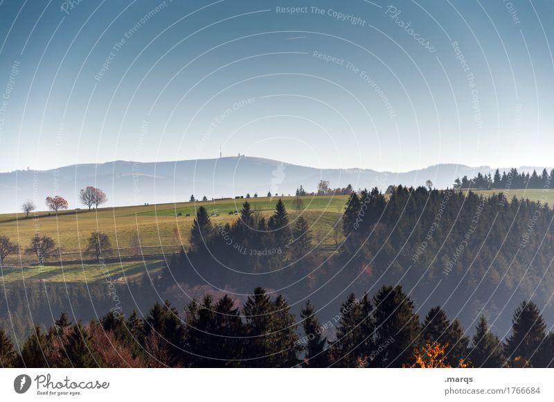 Herbstig Tourismus Ausflug Ferne Berge u. Gebirge Natur Landschaft Wolkenloser Himmel Schönes Wetter Baum Wiese Hügel Erholung frisch Unendlichkeit Gefühle