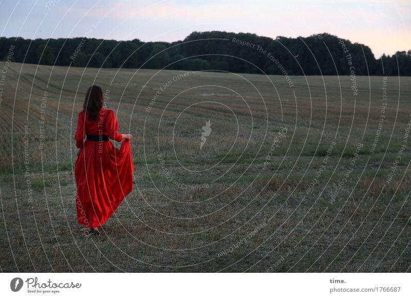 . Mensch Sommer schön ruhig Wald Wege & Pfade Bewegung Gras feminin Zeit Stimmung gehen Zufriedenheit Feld elegant ästhetisch