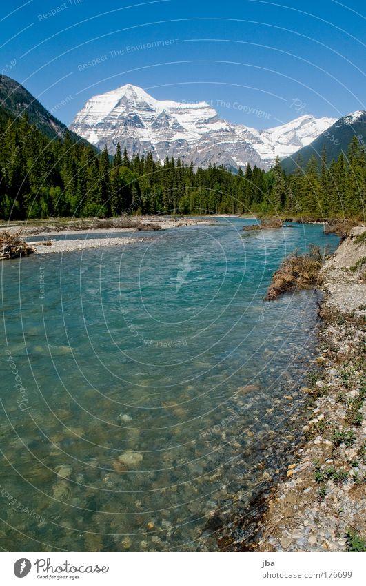 Mt. Robson Natur Wasser Himmel Sonne Sommer Ferien & Urlaub & Reisen Ferne Wald Erholung Berge u. Gebirge Frühling Freiheit Park Landschaft Luft Felsen